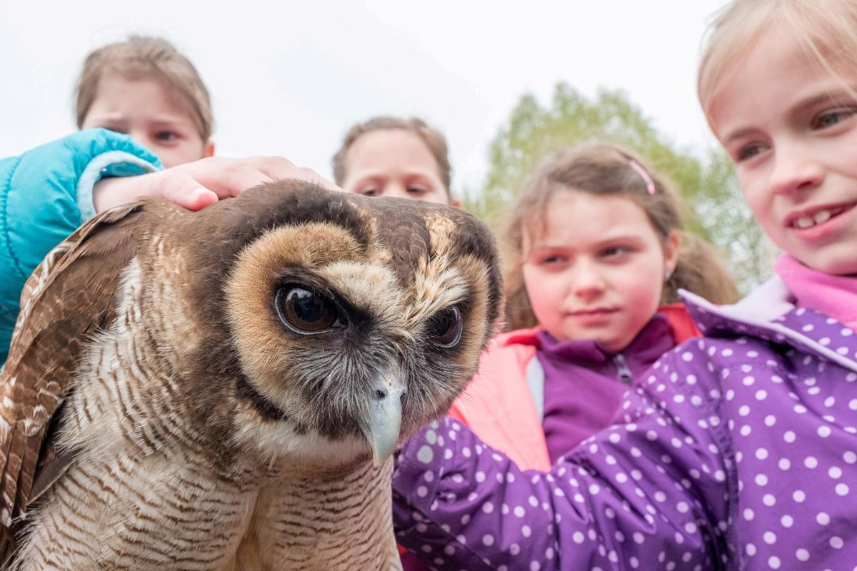 Naturschutz-Camp im Neunkircher Zoo