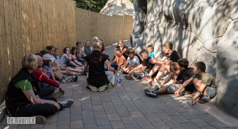 Sommerferienprogramm – Tierisch wilde Dienstage und Donnerstage
